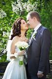 Happy groom and happy bride in spring garden Royalty Free Stock Photography