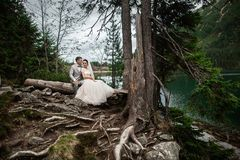 Happy groom and his charming new wife holding each other while sitting on the shore of forest lake Morskie Oko stock image
