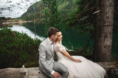 Happy groom and his charming new wife holding each other while sitting on the shore of forest lake Morskie Oko stock images