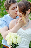 Happy groom kisses the bride on cheek. Spring walk Royalty Free Stock Photo