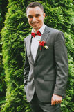 Happy groom near green cypress Royalty Free Stock Photo