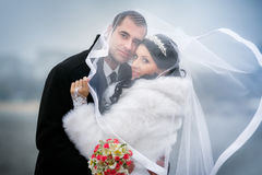 Happy groom and the pretty bride in autumn park Royalty Free Stock Photos