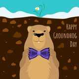 Happy Groundhog Day predictions on 2 february. Spring or winter is comming? vector illustration