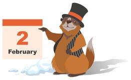 Happy Groundhog Day. Marmot holding February 2 Stock Images