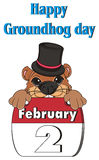 Happy groundhog day. Snout of groundhog in hat stick out from calendar under the words vector illustration