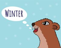Happy Groundhog day vector illustration. The Groundhog announces winter. Head marmot closeup royalty free illustration