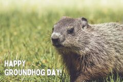 Free Happy Groundhog Day White Text With Adorable Groundhog Stock Photography - 206703382