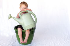 Happy Growing Baby stock images
