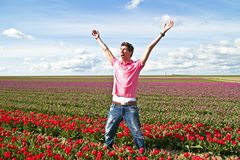Happy guy in the tulip fields Stock Photos