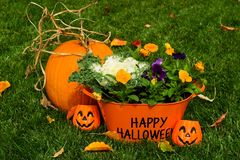 Free Happy Halloween Royalty Free Stock Photos - 1322048
