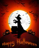 Happy Halloween background with witch and pumpkins on the full moon Stock Images