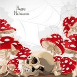Happy Halloween banner with amanita mushroom royalty free stock images