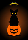 Happy Halloween. Black cat sits on pumpkin at night. Terrible sy Stock Photos
