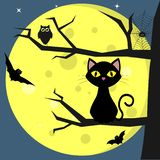 Happy Halloween. A black cat sits on a tree, against a background of a full moon at night. Owl, spider, cobwebs royalty free illustration