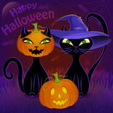 Happy Halloween black cats card template. Halloween night vector poster with black cats, Jack O'Lantern, witch's hat, moon, cobweb and bats Royalty Free Stock Photo