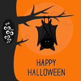 Happy Halloween card. Bat hanging on tree. Hollow with eyes in the dark. Closed wings. Cute cartoon character. Baby illustration c. Ollection. Flat design Stock Photography