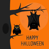 Happy Halloween card. Bat hanging on tree. Hollow and owl bird. Royalty Free Stock Image