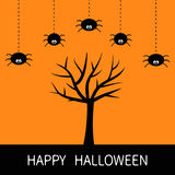 Happy Halloween card. Black tree silhouette. Plant branch. Spider hanging Dash line. Cute cartoon character set. Spooky. Baby illustration collection. Flat Royalty Free Stock Images