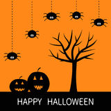 Happy Halloween card. Black tree silhouette. Pumpkin smiling face Spider hanging Dash line. Cute cartoon character set. Spooky bab. Y illustration collection Royalty Free Stock Photography