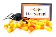 Happy Halloween. Card with candy corn and toy spider over white royalty free stock photos
