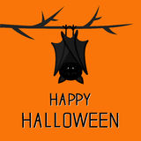 Happy Halloween card. Cute sleeping bat hanging on tree branch. Royalty Free Stock Image