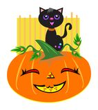 Happy Halloween Cat and Pumpkin Stock Photo