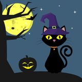 Happy Halloween. The Halloween cat witch-hat sits next to the pumpkin. A tree, a spider, a full moon at night. Flying vampires and stock illustration