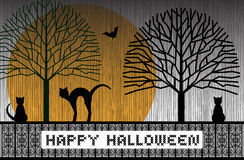 Happy Halloween Cats Stock Image