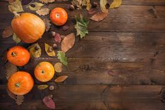 Happy Halloween! The concept of the autumn holiday royalty free stock images