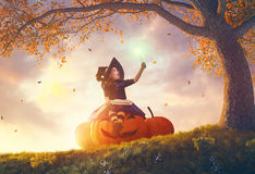 Witch with a big pumpkin Stock Photos