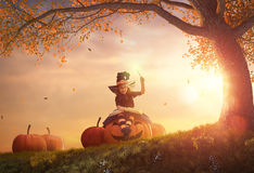 Witch with a big pumpkin stock photography