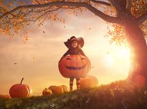 Witch with a big pumpkin royalty free stock image