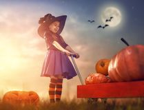 Witch with pumpkins Stock Photo