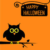 Happy Halloween  cute owl card. Stock Photos