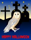 Happy halloween with cute owl on cemetery in night Stock Images