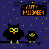 Happy Halloween  cute owls card. Starry night. Stock Image