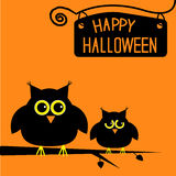 Happy Halloween  cute owls card. Stock Photography