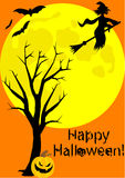 Happy Halloween illustration with witch Royalty Free Stock Images