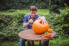 Happy halloween. Man carving big pumpkin on a wooden table for Halloween outside. Close-up royalty free stock images