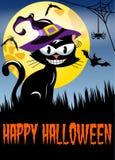 Happy Halloween night background cat big moon Royalty Free Stock Photography