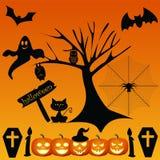 Happy halloween. On the orange background Stock Photos