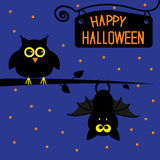 Happy Halloween owl and bat card. Stock Photography