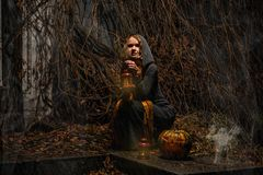 Happy Halloween! A pretty witch with a big pumpkin. Beautiful yo Stock Images