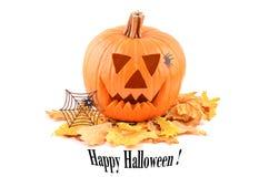 Happy Halloween pumpkin card. Stock Images