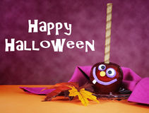 Happy Halloween red toffee apple candy with text Stock Image
