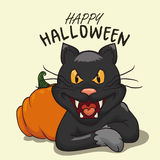 Happy Halloween sign with Black Cat and Pumpkin, Vector Illustration Stock Photo