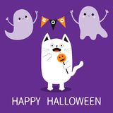 Happy Halloween. Spooky frightened cat holding pumpkin face on stick.. Flag garland. Flying transparent ghost bunting flags Boo. Funny Cute cartoon baby Stock Photo