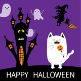 Happy Halloween. Spooky frightened cat holding pumpkin face  Royalty Free Stock Photography