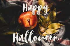 Happy halloween text sign  flat lay. autumn pumpkin with colorfu Royalty Free Stock Image