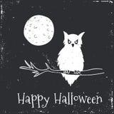 Happy Halloween Typographical Background. Owl Stock Photo
